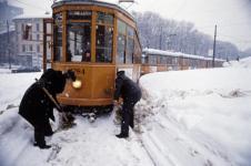 nevicata-85-1