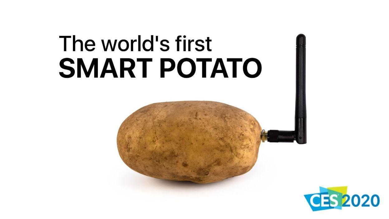 Smart Potato